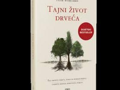 http://www.knjiznica-zlatar.hr/foto-knjige/26329.jpg